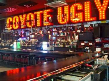 Coyote-Ugly_375x281